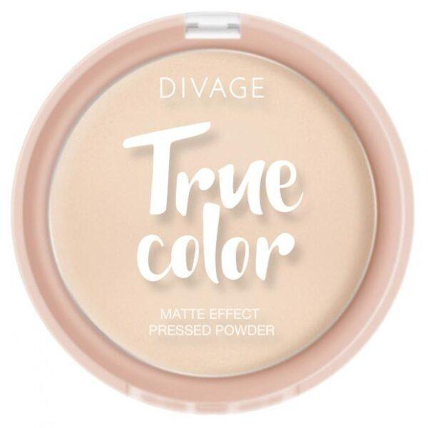 Пудра компактная Divage True Color Fair тон №01