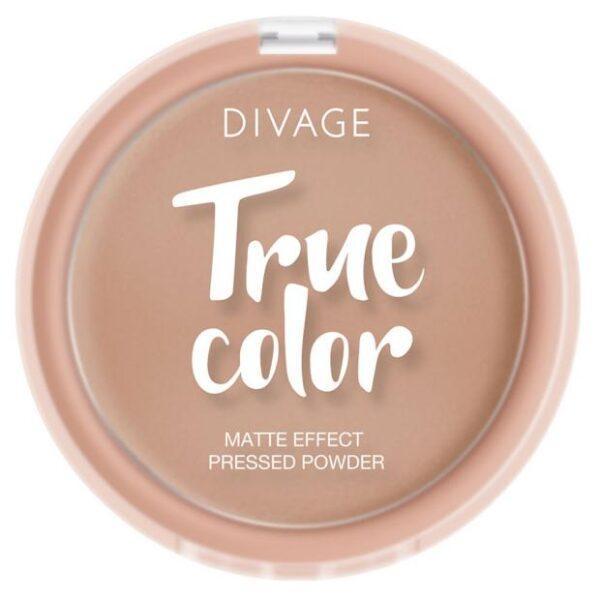 Пудра компактная Divage True Color Honey тон № 05