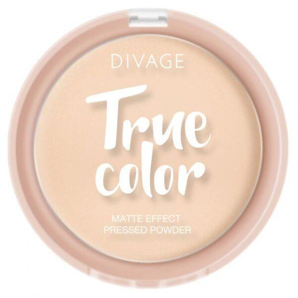 Пудра компактная Divage True Color Ivory тон № 02