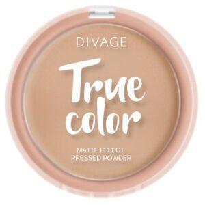 Пудра компактная Divage True Color Sand тон № 04
